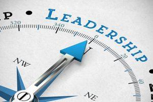 Kendi Sektörünüze Liderlik Etmek