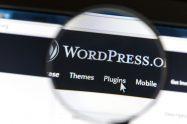WordPress Eklentileri